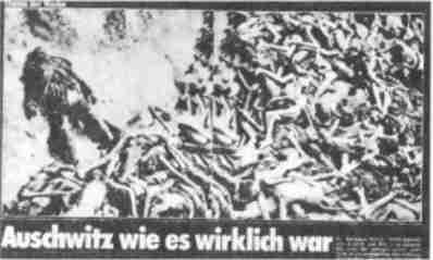 monster mädchen folge 1 deutsch bs