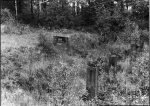 Document 47. General view, looking roughly south-north, of the ruins of the Krematorium III
