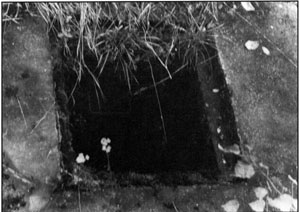 Document 44. Entrance to the Leichenkeller 1 (gas chamber) sewer manhole