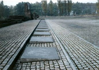 [Image: Birkenau.jpg]
